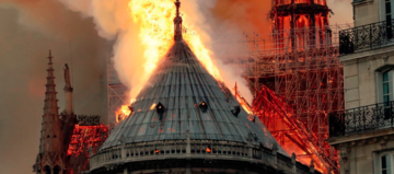 Internationale reissector helpt Notre-Dame
