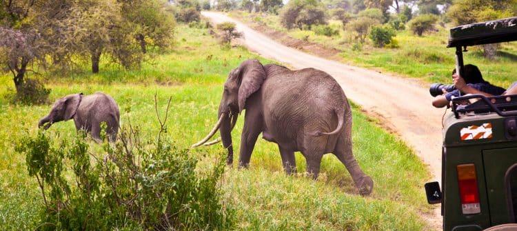 TUI deze winter met eigen airline naar Kenia
