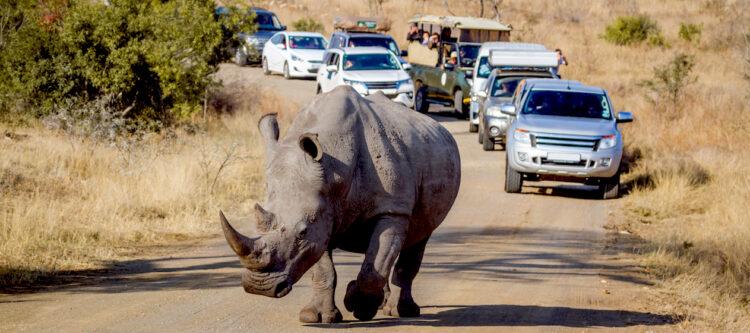 Baanbrekende ontwikkeling voor verantwoord toerisme Zuid-Afrika