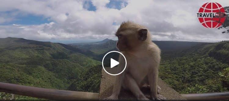 (Video) Incompany studiereis Mauritius TravelXL en TUI