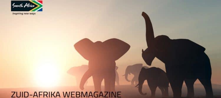 Lees Zuid-Afrika Webmagazine